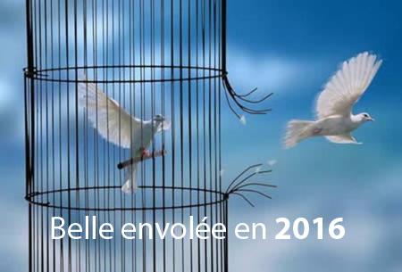 belle envolée vers 2016